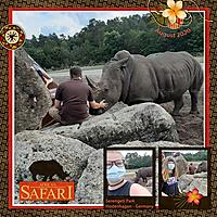 african-safari.jpg