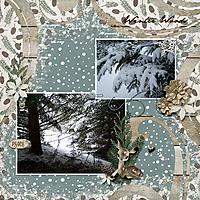 winterwoodsweb.jpg