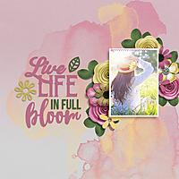 Bloom29.jpg