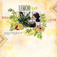 2-3-2015-Lemon-Tree.jpg