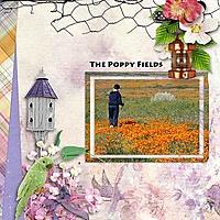 The_poppy_Fields_KS_rfw.jpg