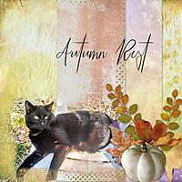 autumn6001.jpg