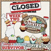 GS_Survivor_10_SugarSpice_2_BlendWell_CLOSED.jpg