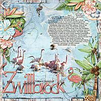 Week_2_Zwillbrock.jpg