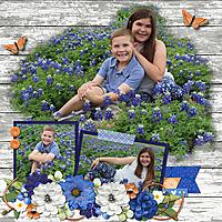 bluebonnets2.jpg
