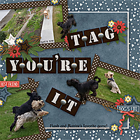 TB-Dogs-Life-Kit-Connie-P-2.jpg