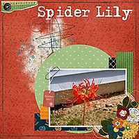 SpiderLily_sm.jpg