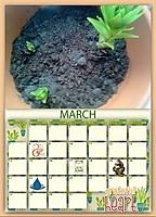 2022_March_rz.jpg