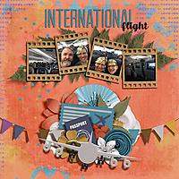 Germany_International_Flight_dss.jpg