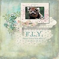 FLY16.jpg