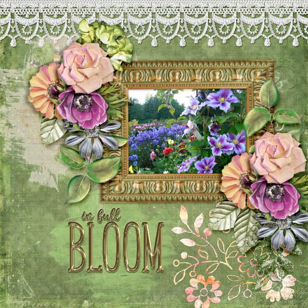 In-full-bloom3