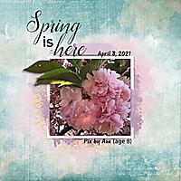 AvaCherry_Blossom_2021_spring_web.jpg