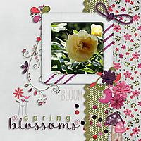 spring_blossoms.jpg