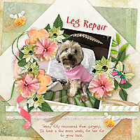 Leg-Repair.jpg