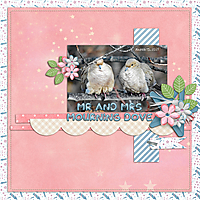 Mr_and_Mrs_Mourning_Dove_GS.jpg