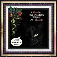 blackcat5s.jpg