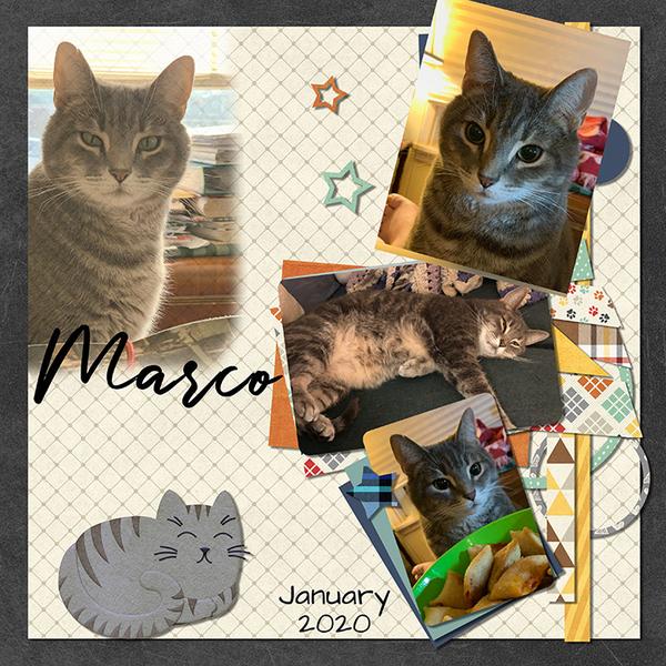 January Marco