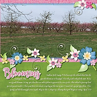 Blooming4.jpg