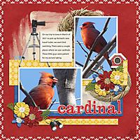 Cardinal-small1.jpg