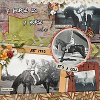 jan-with-horses.jpg