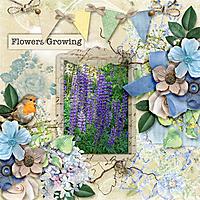 Flowers-growing.jpg