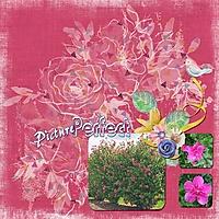 PicturePerfect_11.jpg