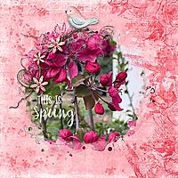 Spring-Flowers-copy2.jpg