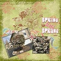 SpringHasSprung2021_1.jpg