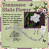 Tennessee-State-Flower.jpg