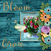 Bloom-and-grow11.jpg