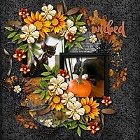 pumpkin-cats2.jpg