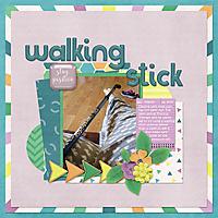 walking_stick_-_bhs_quietmoments_temp1_web.jpg