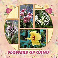 Oahu-flowers.jpg