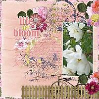 bloom_rz.jpg