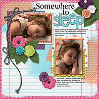 somewheretosleep-resize.jpg