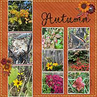 10-7-21_Autumn_1000.jpg