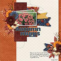Autumn-Mums.jpg