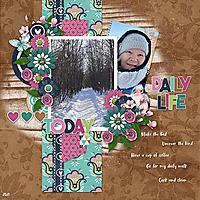 February-2021-Life-Chronicled-Challenge.jpg