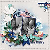 Baby-Harley_webjmb.jpg