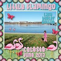 Celeste-flamingo.jpg