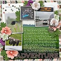 adventure_600_x_600_.jpg