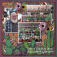 cactusgarden2.jpg