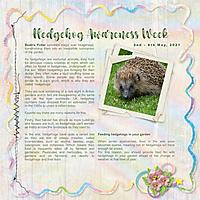 Hedgehog_Awareness_Week.jpg