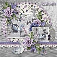 pelicans4.jpg