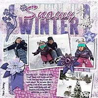 2020_12_17_SNOW_450kb.jpg