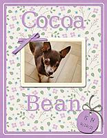 Cocoa-Bean1.jpg