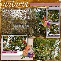 autumn93.jpg