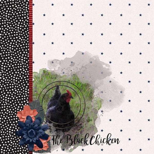 The Black Chicken
