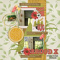 5-25-21-Brood-X.jpg