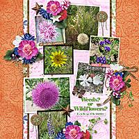 Weeds-or-Wildflowers-GS.jpg